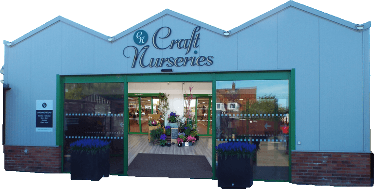 craft nurseries shop front
